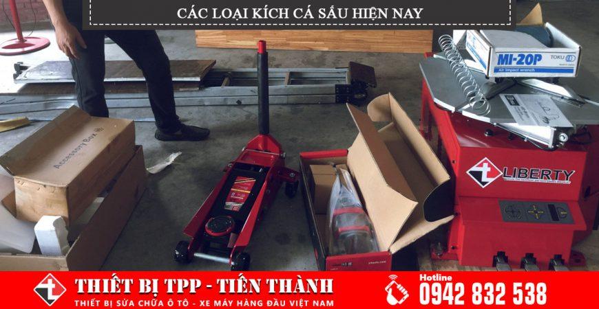 Cac Loai Kich Ca Sau Hien Nay
